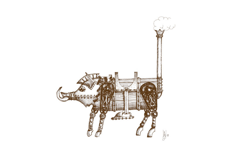 steam-boar-2