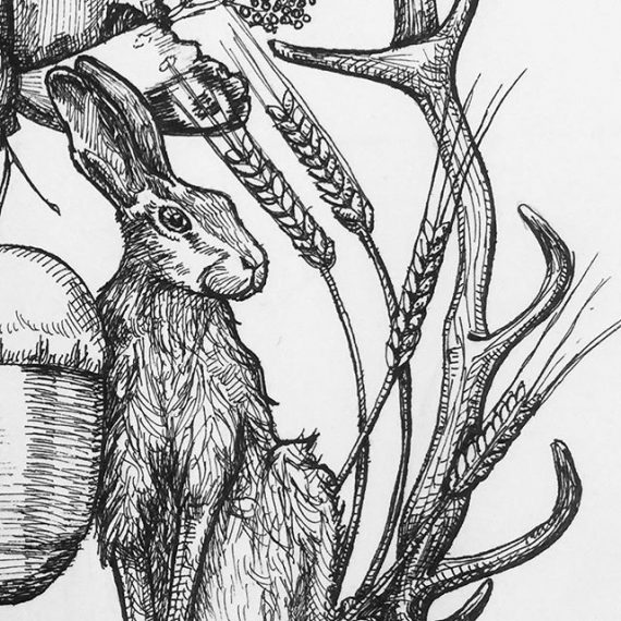 A detail from something I am working on at the moment #hare #acorn #antler #wheat #country side #wildlife #butterfly #penandink #fineliner #rotring #fountainpen #carbonink
